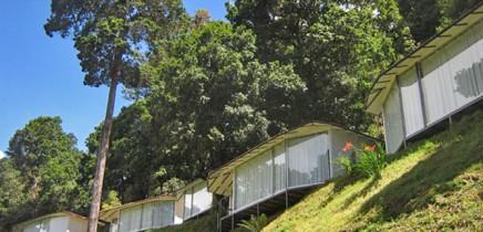 Dantica Lodge Bungalow