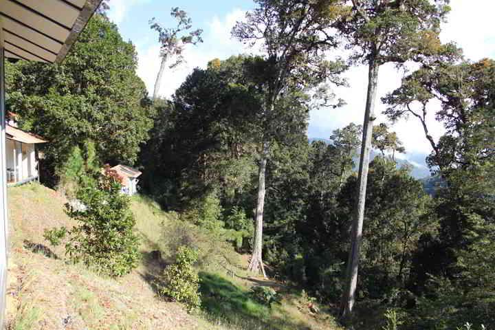 Dantica Lodge Blick zu den Standard Bungalows