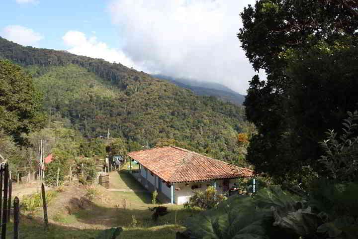Dantica Lodge San Gerado de Dota