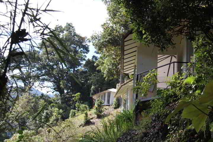 Dantica Lodge Blick zu den Bungalow