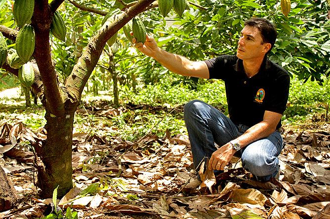 La-Anita-rainforest_lodge-Kakaobaum-Pablo