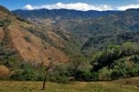 Monteverde-Landschaft