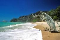 Puntarenas Malpais Cabo Blanco