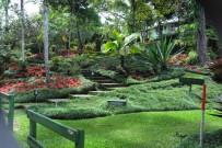 San_Vito_Botanischer-Garten-Wilson_Micha-06-201