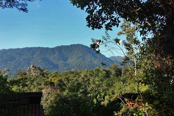 Selva Bananito Lodge – Bergblick