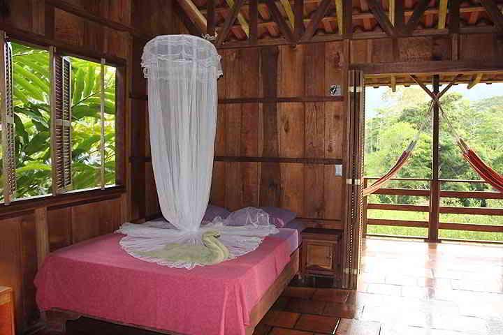 Selva Bananito Lodge – Superior Bungalow