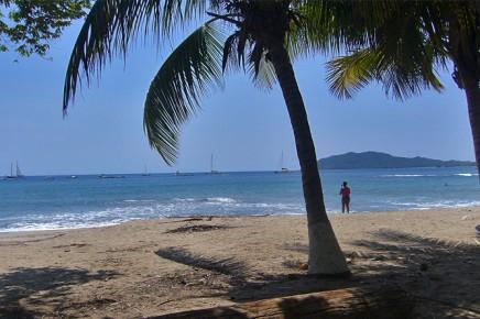 Tamarindo_Foto_Iris-2012-costa-rica