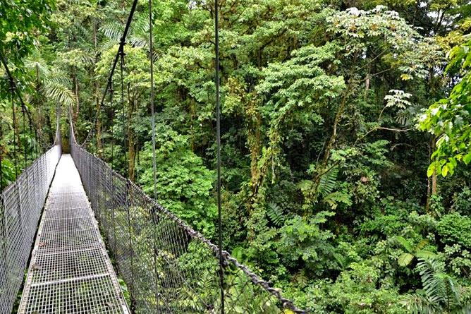Hängebrücke in Arenal, Costa Rica