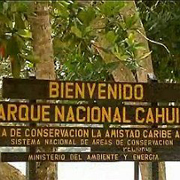Costa Rica Cahuita Nationalpark