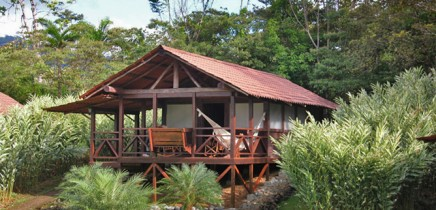La Anita Rainforest Lodge Cabina