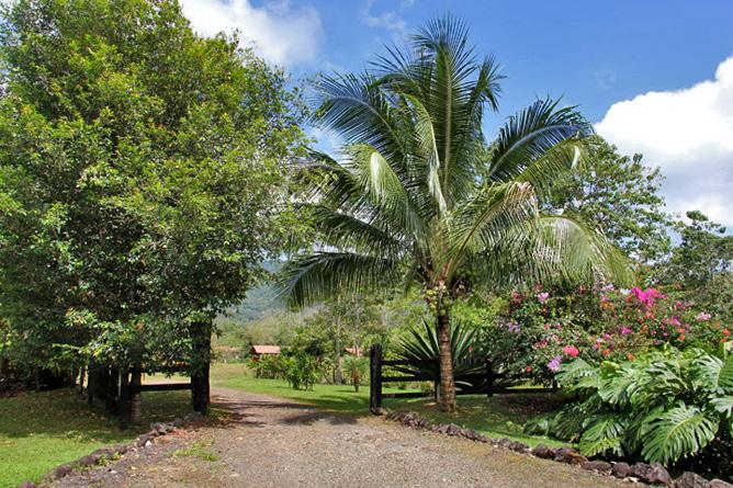 La Anita Rainforest Lodge