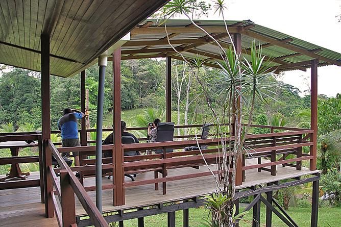 Laguna del Lagarto Lodge – Vogelbeobachtung