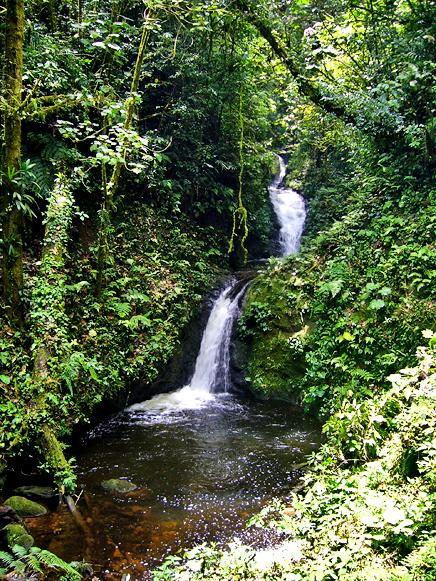 Monteverde – Wasserfall