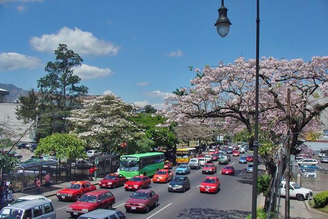 San José – Allée: Avenida