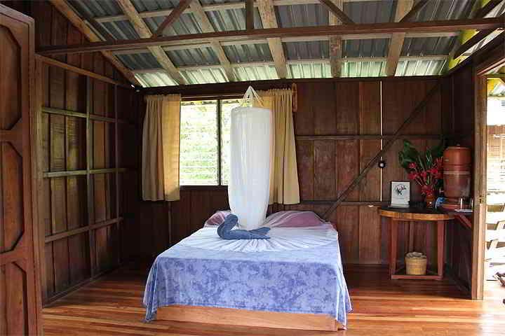 Selva Bananito Lodge Standard Cabina