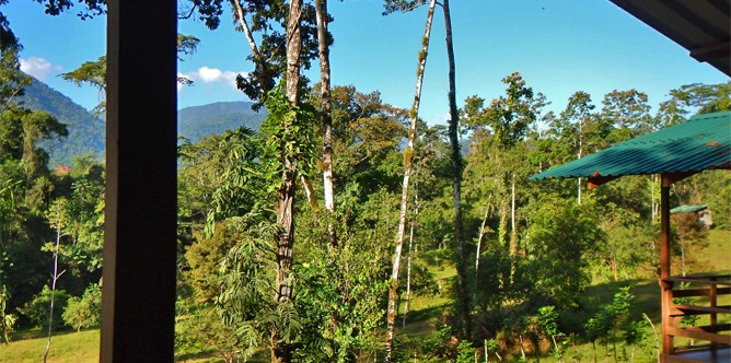 selva_bananito_standard_bungalow_-view