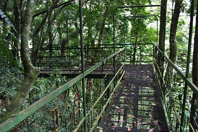 Albergue Pozo Verde – Quetzal-Lehrpfad: Metallbrücke