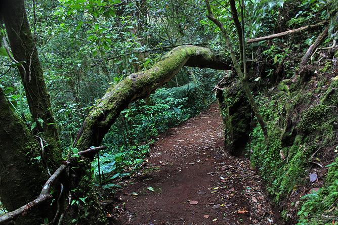 Albergue Pozo Verde – Quetzal-Lehrpfad