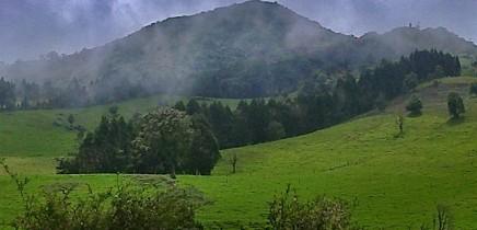 Albergue-Pozo-Verde-Tour-Platanar
