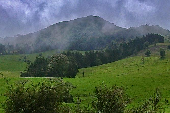 Albergue Pozo Verde – Tour: Platanar