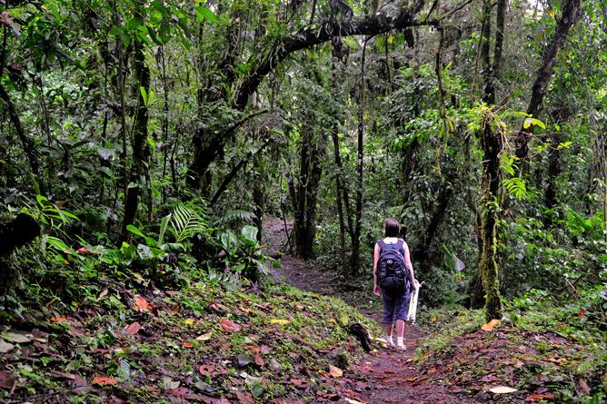 Arenal Observatory Lodge – Wanderweg