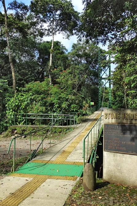 Biologische Station Hängebrücke