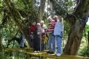 Monteverde Cloud Forest Lodge: Canopy