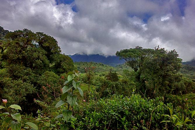 Cuidad Quesada – Wassernationalpark Juan Castro Blanco