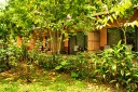 Tirimbina-Lodge - Deluxe-Zimmer mit Terrasse
