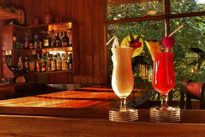 Monteverde Cloud Forest Lodge: Bar