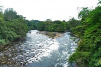 Fluss_durch-biologisches-Reservat-Tirimbina