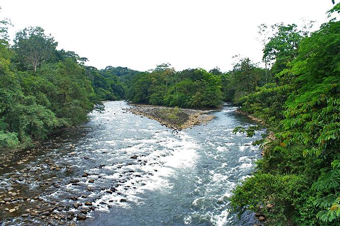 Tirimbina-Lodge – Fluss durch das biologische Reservat