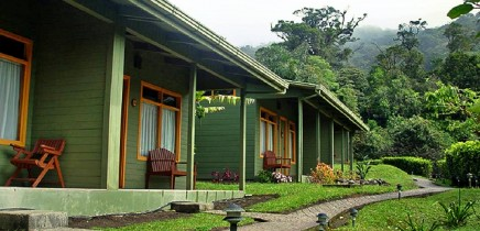Gästezimmer-Cloud-Forest-Lodge