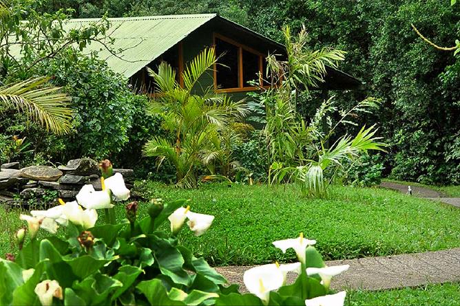 Monteverde Cloud Forest Lodge: Gartenanlage mit Gästebungalow