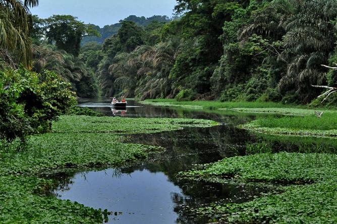 Mawamba Lodge – Tortuguero Kanal