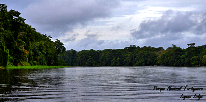 Laguna Lodge Tortuguero – Nationalpark Tortuguero