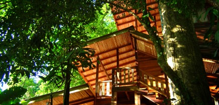 Samasati: Standardzimmer im Namaste-Haus
