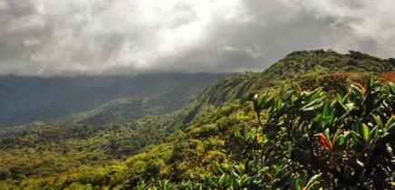 Sicht-von-Monteverde-Cloud-Forest-Lodge