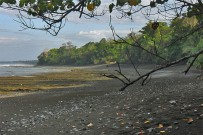 Sirena-Biologische-Station_Drake-Bay-1