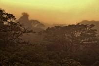 Stimmungsbild_Monteverde-Cloud-Forest-Loge