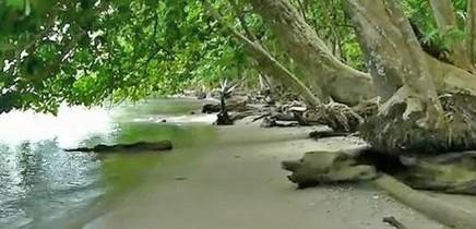 cahuita_beach