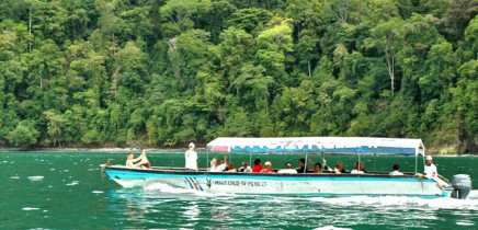 esquina_rainforest-Costa-2