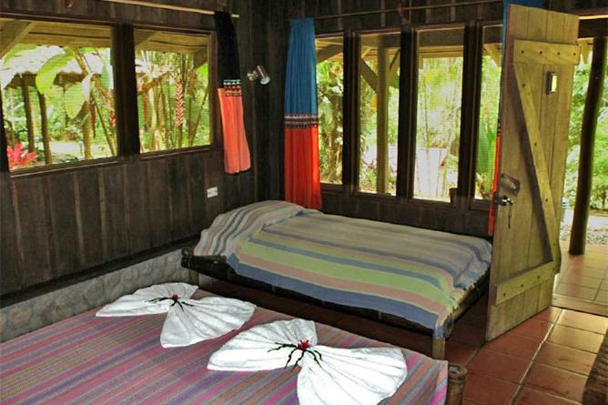 esquina_rainforest-Standard-Zimmer