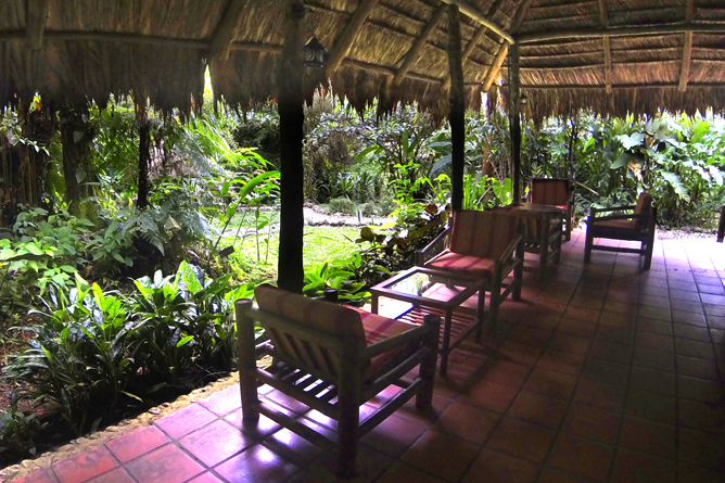 esquina_rainforest-lobby_18x13_5
