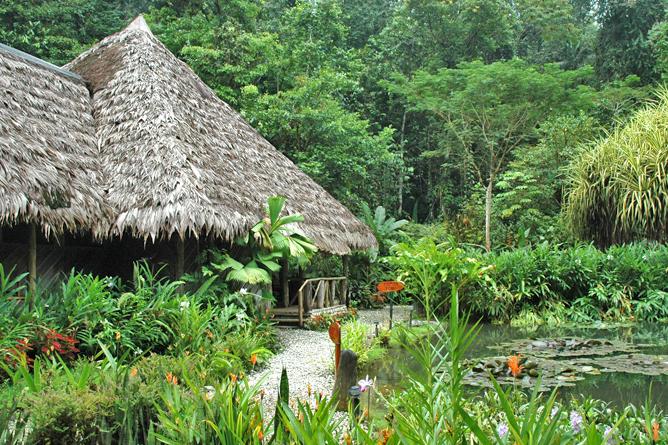 esquina_rainforest-mainlodge2