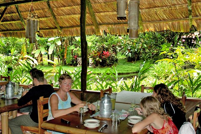 esquina_rainforest-restaurant1