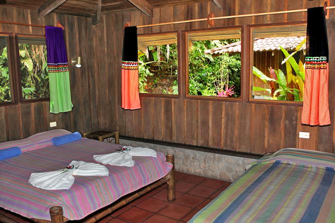 esquina_rainforest-room1
