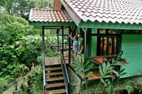 Albergue-Rainforest-Lodge