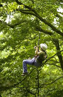 Arenal Kokoro – Zipline-Canopy