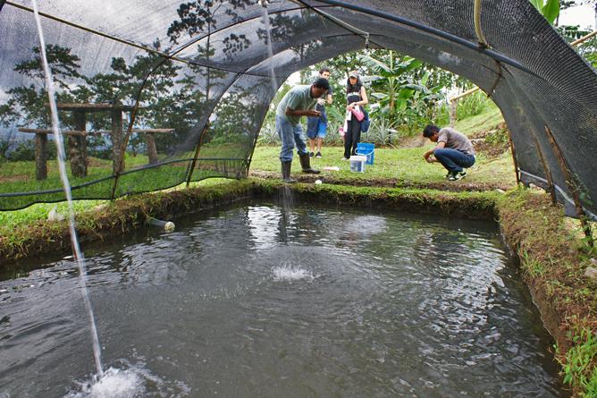 """Green Lagoon – Fischteiche im Bio-Garten """"El Escondido"""""""